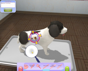 Test du jeu 30 millions d'amis : Mon refuge pour animaux