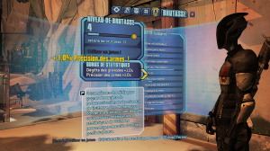 Un bug sur Borderlands 2