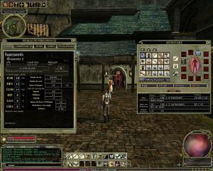 Dungeons & Dragons Online : Stormreach