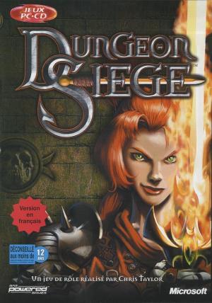 Dungeon Siege sur PC