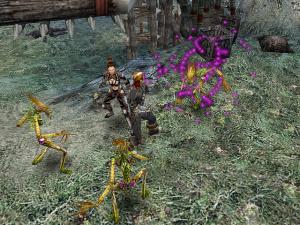 Dungeon Siege 2 - PC