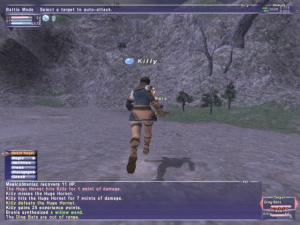 Final Fantasy XI traduit des deux côtés du Rhin