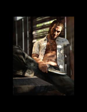 Images de Far Cry 3