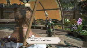 Images de Final Fantasy 14: A Realm Reborn
