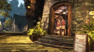 Guild Wars 2 : à chacun son histoire