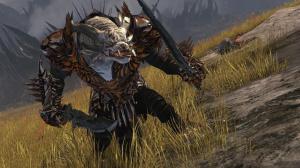 Guild Wars 2 : description du guerrier en images
