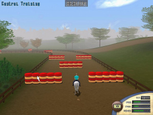Images : Horse Tycoon