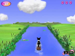 De nouveaux jeux pour les amateurs de chiens et chats