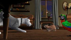Deux images des Sims 3 : Animaux et Compagnie