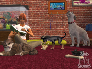 Images : Les Sims Histoires d'Animaux