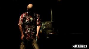 Le point sur Max Payne 3