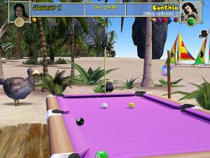 Pool Paradise