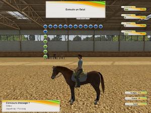 Riding Star : Deviens Championne D'Equitation