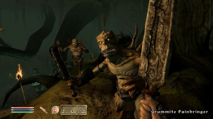 Images : Oblivion : The Shivering Isles