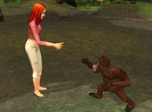 Images : Les Sims Histoires de Naufragés