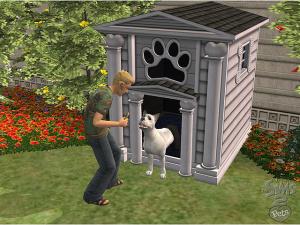 Images : Les Sims 2 Animaux & Cie