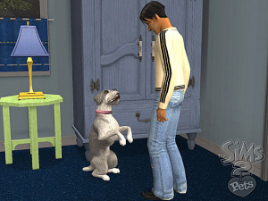 Les Sims 2 Animaux & Cie : la bande-son