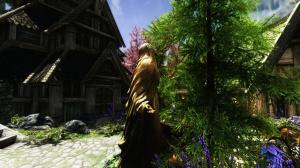 Skyrim fait le beau grâce à quelques mods