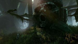 Images de The Witcher 2