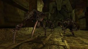 Images de Dragon Age : Origins