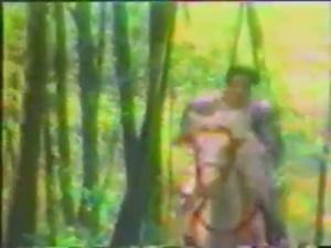 Jaquette de Dragon Quest : Spot TV US