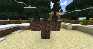 Faire apparaître le Wither Boss
