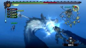Quelques détails sur Monster Hunter 3