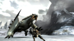 Images de Monster Hunter 3