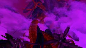 Images de One Piece Unlimited Cruise : Episode 2