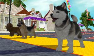 GC 2008 : Petz Sports : Dog Playground