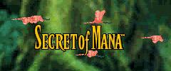 Secret of Mana sur Wii