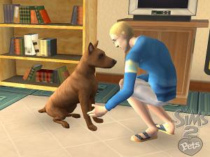 Les Sims 2 : Animaux & Cie viennent se nicher sur la Wii