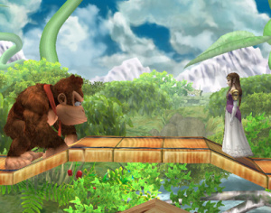 Super Smash Bros Brawl en vidéo