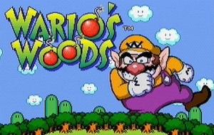 Wario's Woods sur Wii