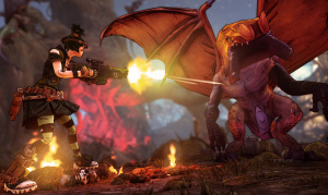 Borderlands 2 : Tiny Tina's Assault on Dragon Keep