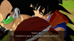 Galerie maison de Dragon Ball Z : Burst Limit