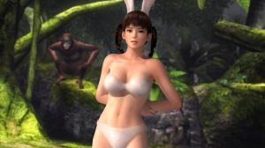 Dead or Alive 5 : DLC bikinis ou à poils