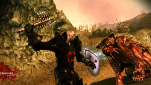 Images et vidéo de Dragon Age Origins : The Awakening