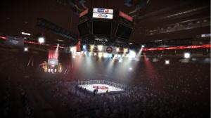 Images de EA Sports MMA