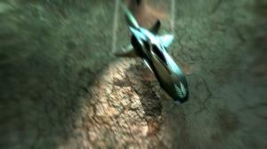 Images : Fatal Inertia