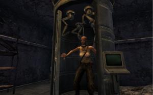 Encore des images de Fallout New Vegas : Dead Money
