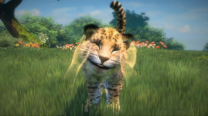 Images de Kinectimals