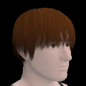 Du contenu pour Les Sims 3 sur consoles