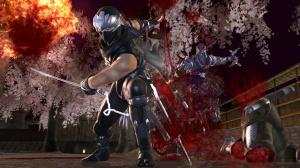 Images : Ninja Gaiden II tranche dans le vif
