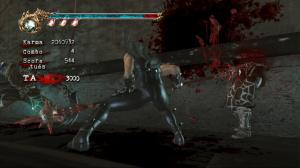 Ninja Gaiden II