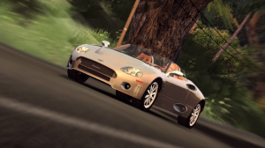 Images : Test Drive Unlimited, road trip bucolique