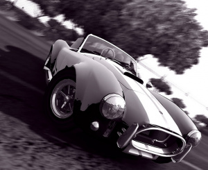 Images : Test Drive tel le Cobra Royal se dresse