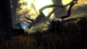 The Witcher 2 sortira aussi sur nos consoles