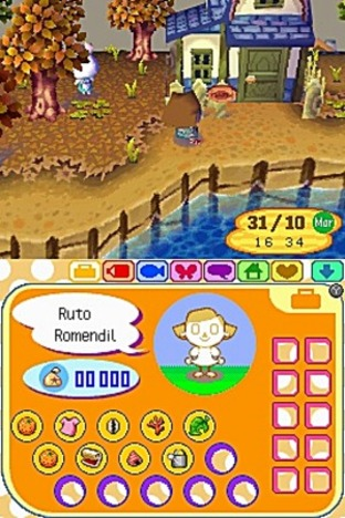 Animal Crossing : Wild World Nintendo DS