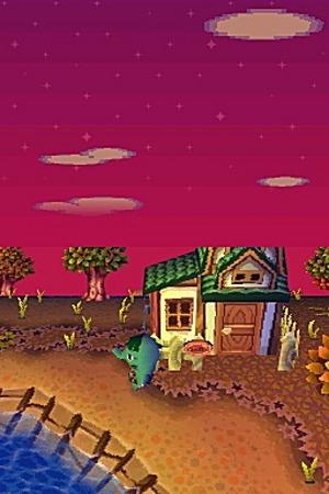 Animal Crossing Wild World Ancrds545